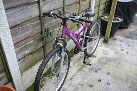 Purple Bicycle for sale