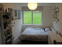 Big Room for rent in a 4 bedroom house-Forest Hill