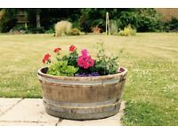 OAK BARREL PLANTER