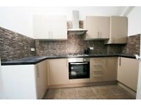 Brand new 2 bedroom flat in Tulse Hill