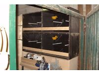 CANARY BREEDING BOXES