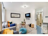 SW8 - STUNNING 3 BED SPLIT LEVEL FLAT IN VAUXHALL WITH PRIVATE PATIO - AVAILABLE NOW!