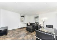 STUNNING 1 BED APARTMENT - MOMENTS FROM TOWER BRIDGE & ST KATHERINES DOCK!