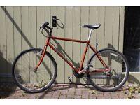 Gary Fisher Wahoo mountain bike