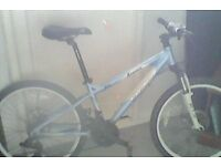 kids carrera mountain bikes