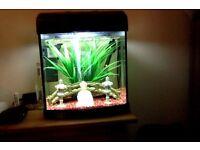 AquaStart 320 Home Aquarium (Fish Incl.)
