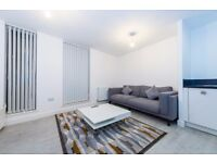Cosy and large 1 double bedroom property next to Pontoon Dock DLR + gym - Waterside Heights E16 JS