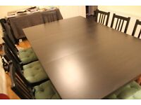 Foldable Table plus 8 Chairs