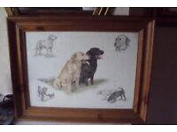 wall picture , dogs labrador