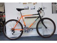 Men's Free Spirit Bike
