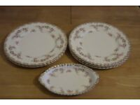 Royal Albert Dimity Rose Dinner Plates