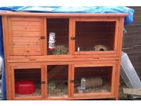Rabbit hutch/cage new open to offers