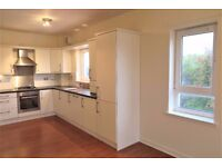Fantastic 3 bedroom property in Chesser - Professionals only