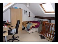 Summer Rooms to rent nr University of York for August 2017