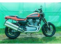 Harley Davidson XR1200. 2010.