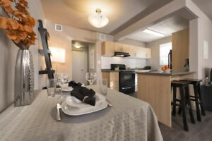 Grandview Apartments, 1 Bedroom Apartment Available Immediately