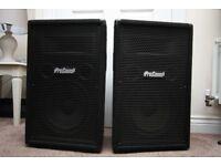 2x ProSound Passive Speakers