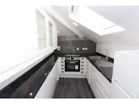 BPG6-Spacious, BRAND NEWLY Renovated ONE BED Penthouse Apartment with 2 Balconies -Belsize Park, NW3