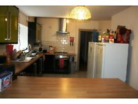 Located in popular Cardiff Suburb of ROATH, modernized and spacious house is offered as a ROOM SHARE