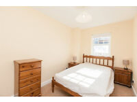 Lovely room double room Newington £442.50 mthly Flatshare