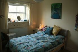 Double room in gorgeous, roomy house share with garden