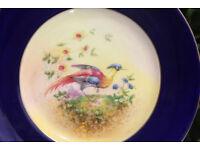Stunning Royal Doulton Antique Handpainted Bird Display Plate 1920's Art Deco