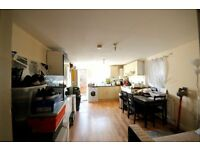 Lovely 2 double bedroom flat with private garden in Brixton