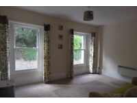 1 Bedroom Flat to rent in Brixham
