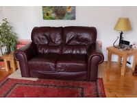 Comfortable 2 Seater Leather Sofas