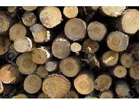 Logs for log burner for sale.