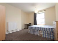 3 ROOMS AVAILABLE IN NEWLY REFURBISHED APARTMENT----PERFECT FOR STUDENTS!