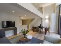 NEW LUXURY ONE BEDROOM FLAT- NOTTING HILL - MOVE IN JANUARY- SHORT AND LONG TERMS AVAILABLE!