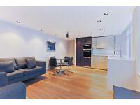 One bedroom flat - Vauxhall / Pimlico