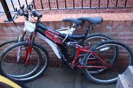 Mountain Bikes x2 Bargain Price