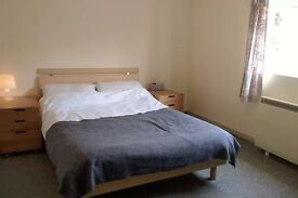 Double room to rent in shared house £400 pcm