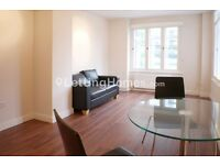 AMAZING 1 bed flat MODERN spacious BRIGHT in heart of London - Large Rooms - Big Reception
