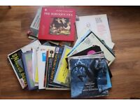 aprox. 40 vinyl records - for a lover of classical music
