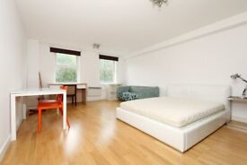 Large Studio/One Bed Flat Moments from Old Street, Barbican & Clerkenwell