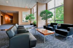 Metropolitan Towers - One Bedroom Apartment for Rent