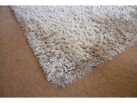 Large Shaggy Rug (well maintained)