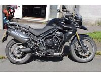 TRIUMPH TIGER 800 ABS LOWERED BIKE WITH LOW MILES