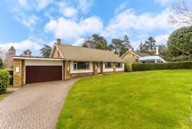 Park Road, Kenley - Three Bedroom Detached Bungalow
