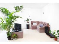 Spacious double bedroom for one person in great 2 bed, sunny flat in Peckham with lots of plants