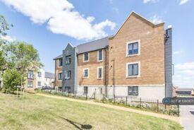 2 bedroom flat in St. Cross Road, Basingstoke, RG24 (2 bed) (#1080671)