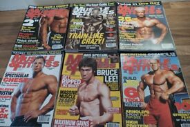 51 Muscle and Fitness Magazines