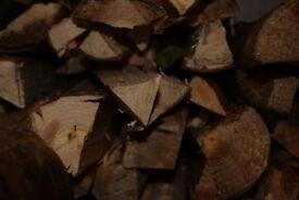 Seasoned Logs and Kindling