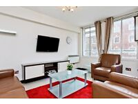 Stunning one bedroom apartment in Baker Street