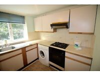 1 bed flat in Taplow Slough Dss welcome