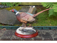 Hamilton Collection Great Gamebirds of Britain (PHEASANT) Titled Autumn Majesty by Michael A. Balas