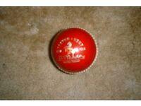 Cricket ball (Mens match)